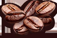 Café | Delilú Ecuador