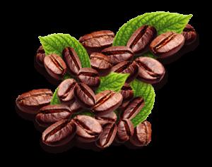 Delilú   Café
